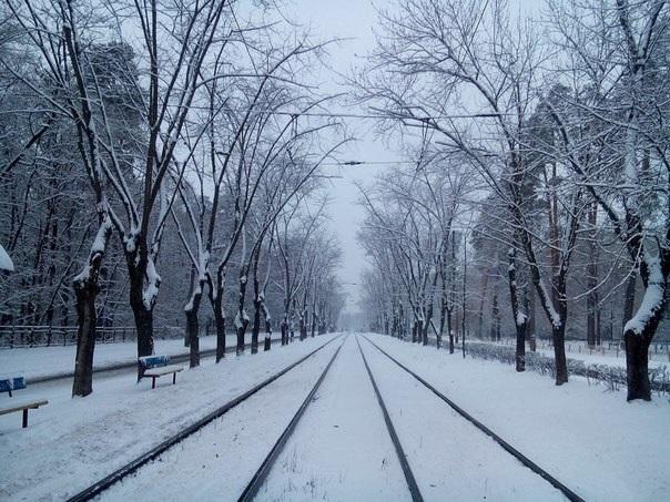 В Киеве выпал первый снег. Фото